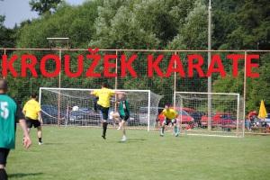 karate FOtate
